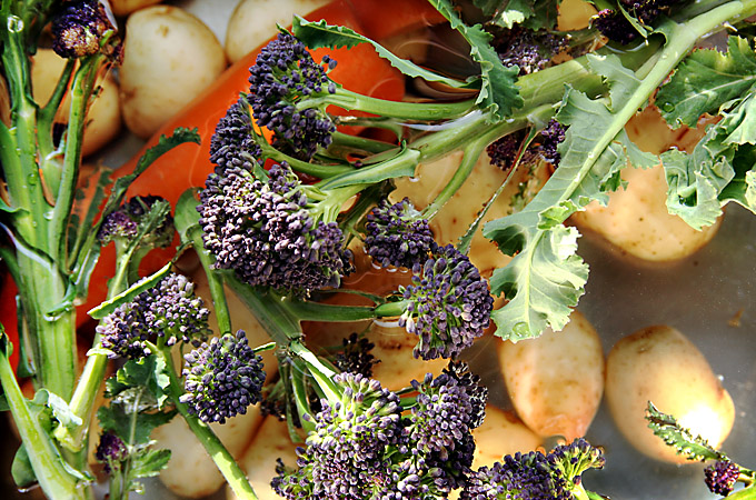 Prepared veg