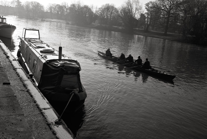 Thames rowers